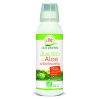 Sumo de Aloe Arborescens com Mel Bio