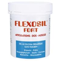 Flexosil Forte