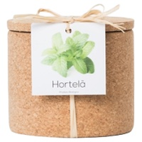 Menthe-Grow Cork Pot