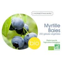 Myrtille baies bio