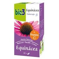 Bie 3 Equinacea