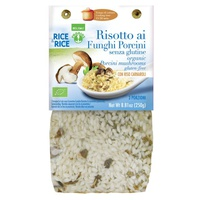 Porcini mushroom risotto - with miso