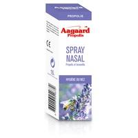 ORGANIC nasal spray