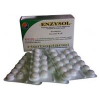 Enzysol 24g
