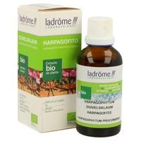 Extracto Harpagofito Bio