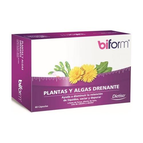 Plantas y Algas Drenante