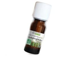 Aceite esencial de euca globulus