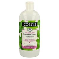 Antischuppen- und Schuppen-Shampoo
