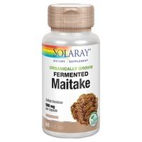 Maitake fermentado