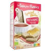 Spécial Matin Multigrain Toasts