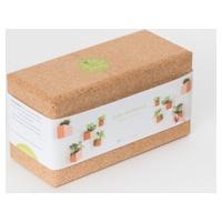 Basilic et Coriandre-Grow Cork Block – Jardin Vertical