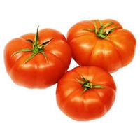 Tomate Rebelion Bio