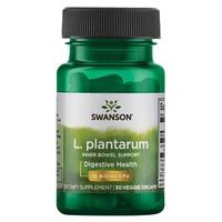 L. Plantarum Inner Jelit Support