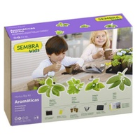 Aromatic Seeds