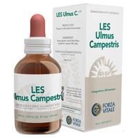 Les Ulmus Campestris 50 ml de Forza Vitale