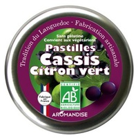 Blackcurrant Lime Pastilles