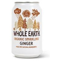 Sugar Free Ginger Soda Bio