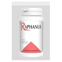 Raphanus