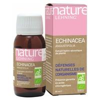 Echinacea Angustofolia