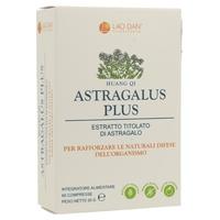 Astragalus Plus (Huang Qi)