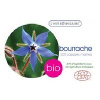 Borretsch Bio-Öl