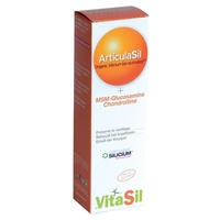Vitasil Articulasil Msm Gel
