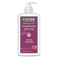 Sulfate Free Frequent Use Shampoo