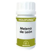 Holofungi Lion Mane