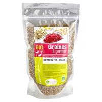 Semillas para germinar - Remolacha roja Bio