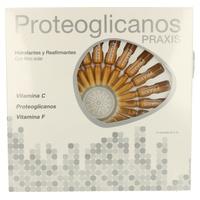 Proteoglicanos