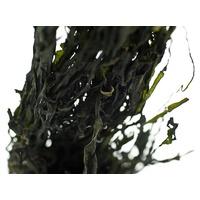 Organiczne liście Wakame