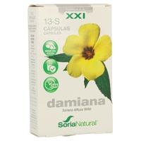 13 S Damiana (Fórmula XXI)