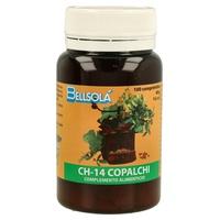 Ch-14 Copalchi