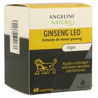 Ginseng Leo