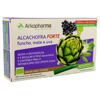 Artichaut Forte Bio