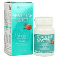 Gemoline Master