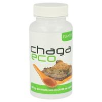 Chaga Eco