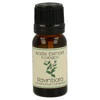 Aceite Esencial Bio de Ravintsara Frasco Gotero de aceite esencial de 12 ml de Labiatae