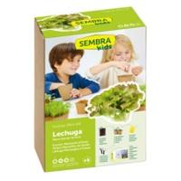 Summer Wonder Lettuce Seeds