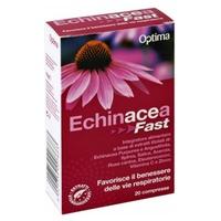 Echinacea Fast